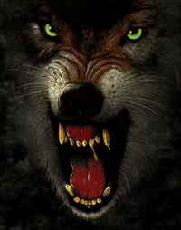 wolff ramos