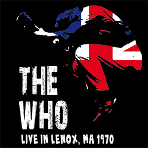 the-who-guitar-live-in-lenox