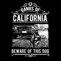 Gangs-Of-Californias