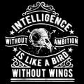 Inteligence-Without-Ambition
