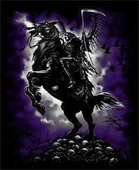 Skull Horsee