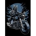 Samurai-Rider