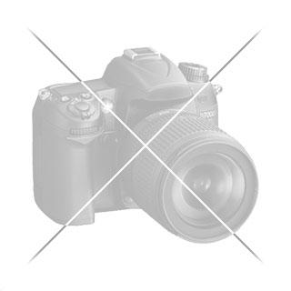 Naranjito mecánico